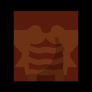 トコジラミ成虫