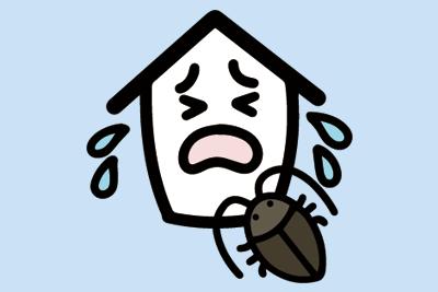 ゴキブリ被害に悩む方必見!ゴキブリ予防の際に対策すべき場所をご紹介
