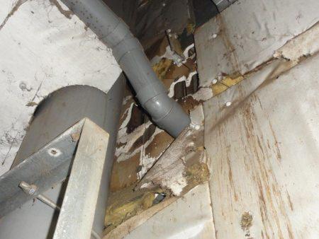 工場内の断熱材がネズミに齧られ食い破られてボロボロになっています。