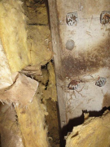工場内での鼠によるかじり跡
