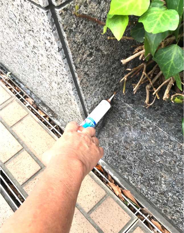 建物外周部にピンポイントでベイト剤を塗布処理しました。