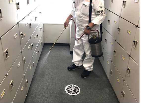 薬剤噴霧処理による防虫施工