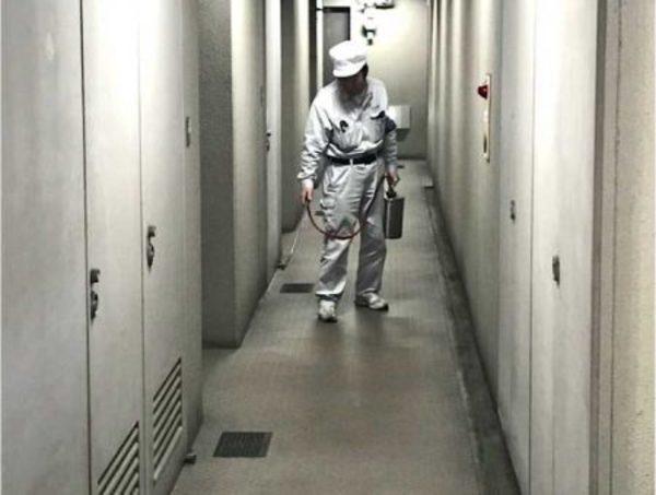 市内 某事務所ビル 定期防虫施工サムネイル